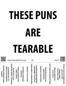 Pun Poster 1