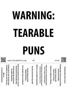Pun Poster 2