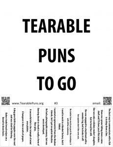 Pun Poster 3