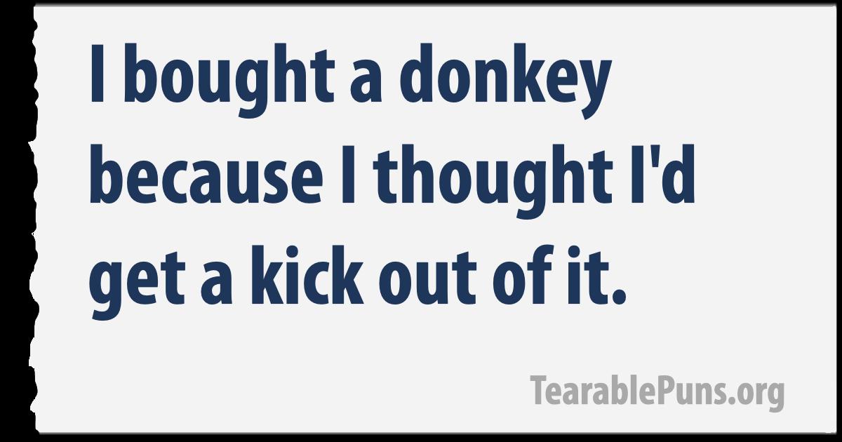 I bought a donkey
